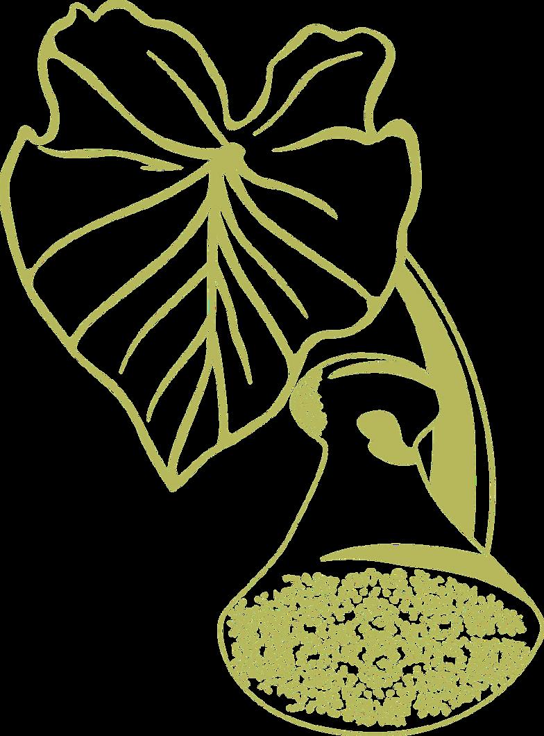 Taro_Logo_lowviz_outline_edited_edited.p
