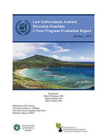 FINAL_LEAD HNL Report_Year 2_cover.jpg