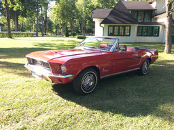 Active Oldtimer Ford Mustang mieten Au - 14