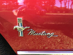 Active Oldtimer Ford Mustang mieten Au - 3