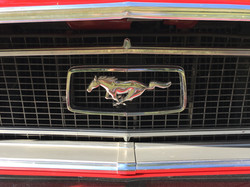 Active Oldtimer Ford Mustang mieten Au - 17