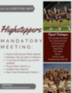 2019-2020 HHS Highsteppers.jpg