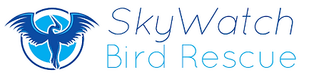 Skywatch Bird Rescue.png