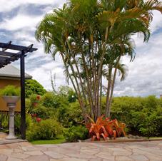 Bamboo Terrace