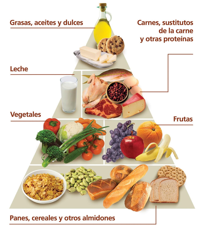 Alimentos carbohidratos en 5 proteinas y ricos lipidos