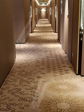 Beautifully clean corridor carpet after