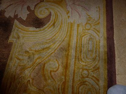 Severe water damage to carpet3.jpeg