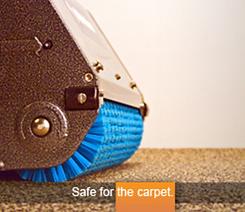 CarpetSmart Safe for the Carpet