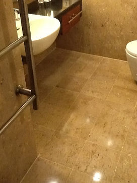 Freshly grouted bathroom floor and new s