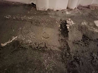 dry carpet cleaner bangkok