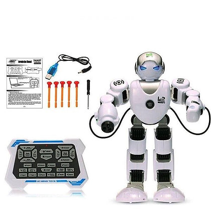 Բազմաֆունկցիոնալ ինտերակտիվ հեռակառավարվող ռոբոտ