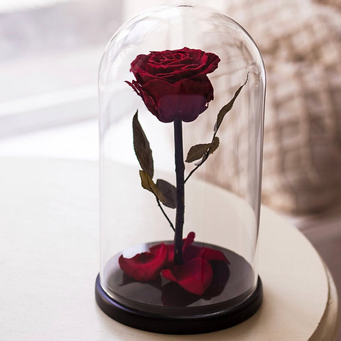 Роза в колбе - 01