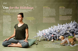 Dr. Oz Magazine: December 2015