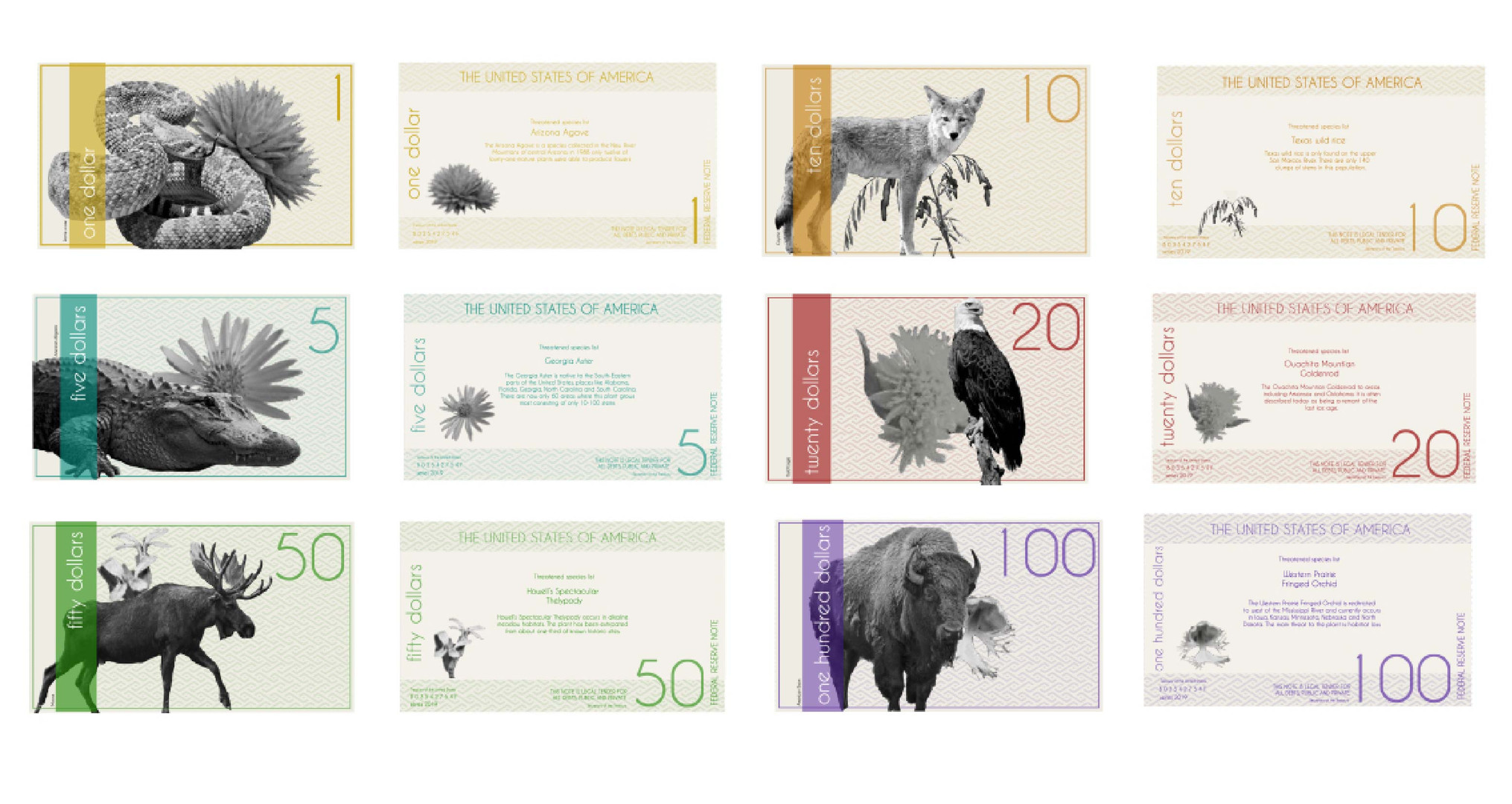 Currency Re-Design