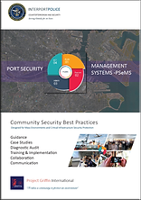 PSeMS Cover V1 11_19_2.png