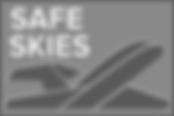 safe skeis logo.png