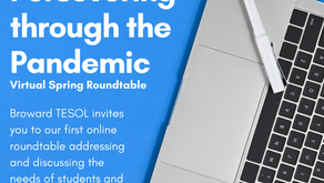 Spring Virtual Roundtable - Persevering through the Pandemic