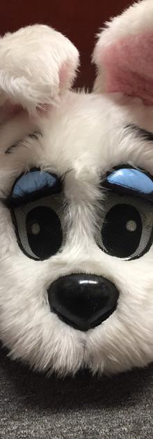 blue eye bright 2.JPG