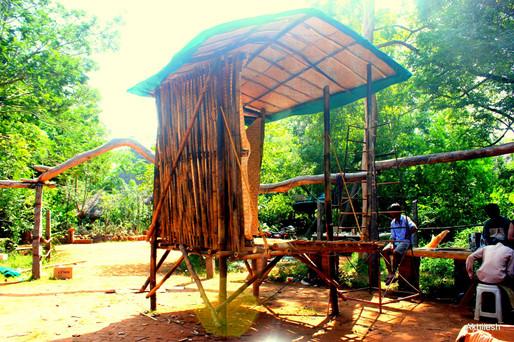 Bamboo Kiosk