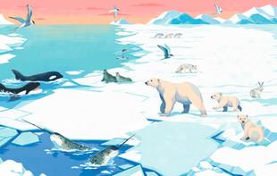 Ice World What a Wonderful World