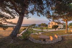 Villa Russelia_Rhodes_Pine tree_43