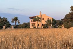 Villa Russelia_Rhodes_field_40