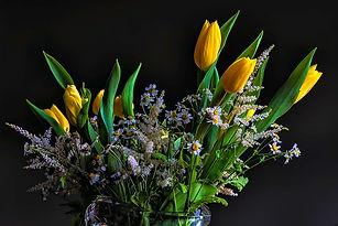 cutting garden sophisticaed tulips 1.jpg