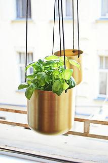 repotting plant- metal 1.jpg