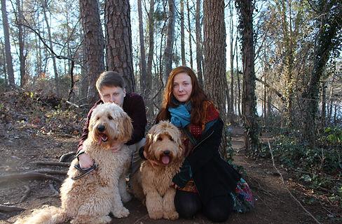 Labradoodles in Raleigh North Carolina