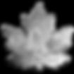 kisspng-canadian-maple-leaf-canada-goose