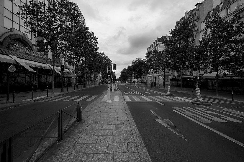 La Coupole - Montparnasse