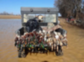 Green Heads | Yellow Labrador | Duck Hunting | ATV | Open Water
