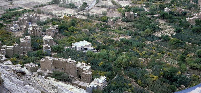 wadidhahr85.jpg