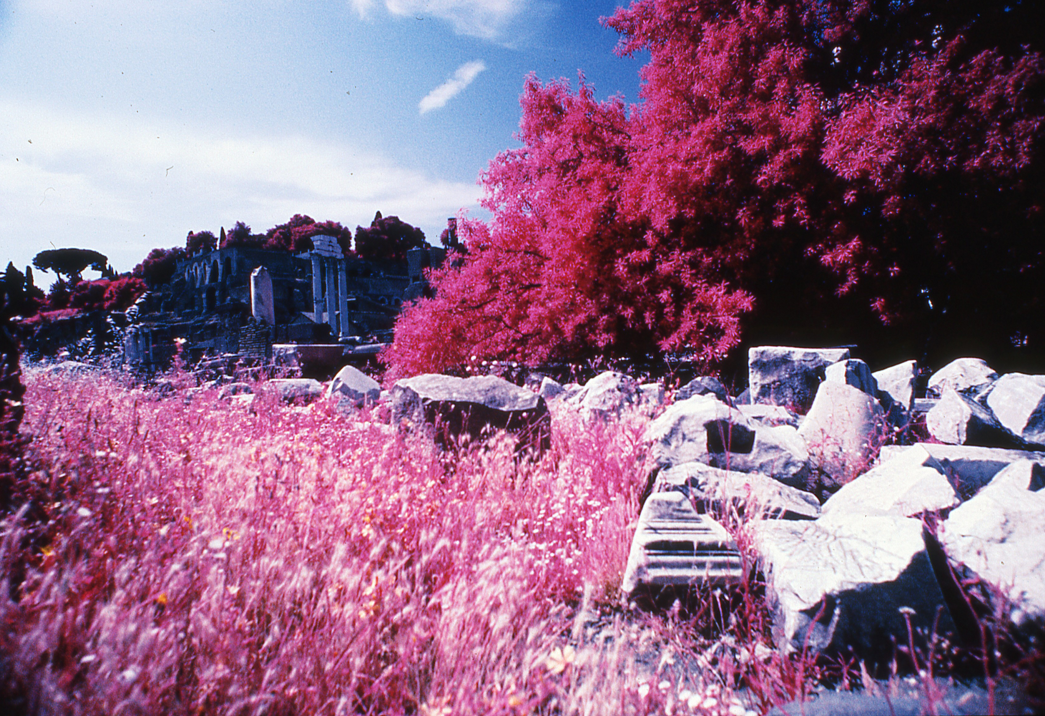 Infrared Rome Cool sHOT