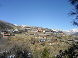 Kinnauri Village