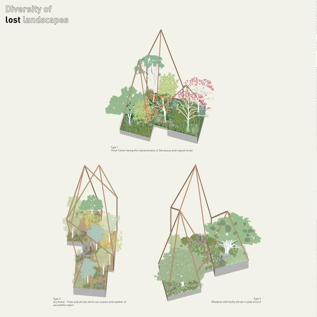 Diversity of Lost Landscapes