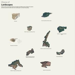 Shape of Landscapes