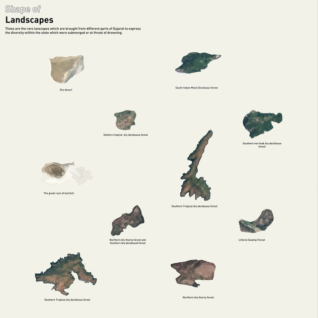 Shape of Landscapes
