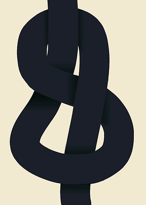 Affiche The Knot