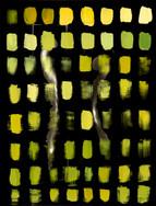 Light Imprint (Fig. 2).jpg