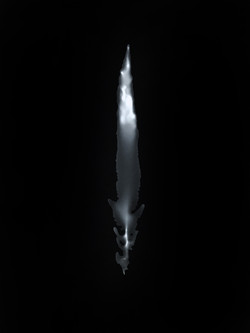 fern.1a