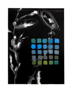 Light Imprint (fig. 9) sold