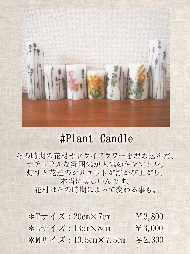 Plant Candle