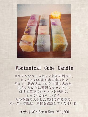 Botanical Cube Candle