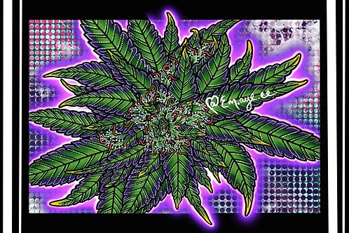 Purple dreams print