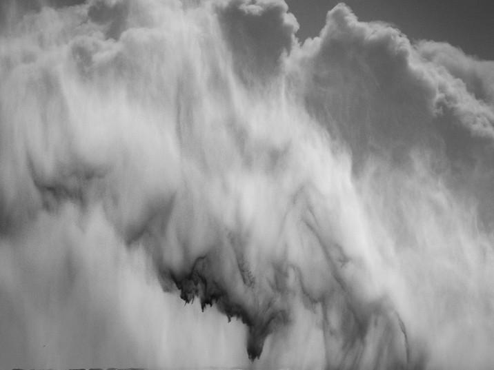 High Seas-8.jpg