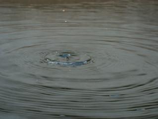 מים - הגיגים מהבטן