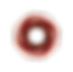 michelle-pucci-2016-logotipo3.png