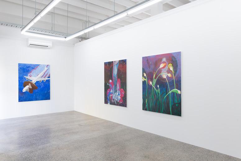 Install, 'Sharing The Sky' 2021, Sumer Gallery