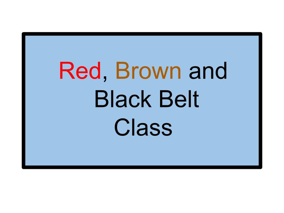 Red, Brown and Black Belt Class